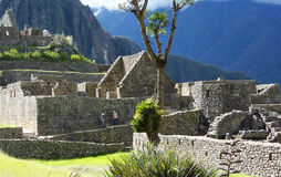 Ruínas de Machu Picchu Imagens de Stock Royalty Free