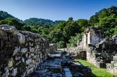 Ruínas de Palenque imagem de stock