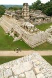 Ruínas de Palenque, cidade do Maya em Chiapas, México Foto de Stock