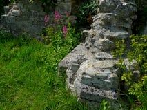Ruínas de St Andrews Church Portland Imagens de Stock