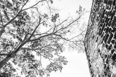 Ruínas de um forte de Famosa no monte de St Paul Fotografia de Stock Royalty Free