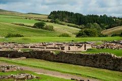 Ruínas de Vindolanda Fotografia de Stock Royalty Free