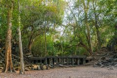Ruínas do templo antigo de Beng Mealea na selva perto de Siem Reap, C fotos de stock royalty free