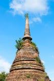 Ruínas do templo budista do stupa ou do chedi Imagens de Stock Royalty Free