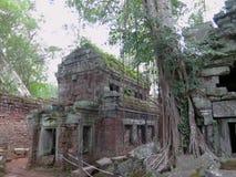Ruínas do templo de Angkor Wat Fotografia de Stock Royalty Free