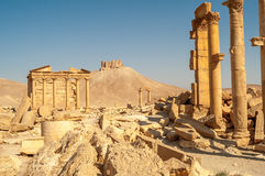 Ruínas do templo do Palmyra Fotografia de Stock Royalty Free