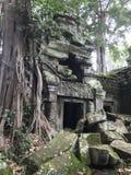 Ruínas do templo em Camboja fotos de stock