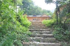 Ruínas dos caminhos das escadas de Stone's de etapas de pedra velhas da construção de exploração agrícola em selvas e em flores fotografia de stock