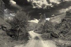 Ruínas e monastério de Basgo, Leh, Ladakh, Jammu e Caxemira, Índia Imagens de Stock Royalty Free