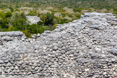 Ruínas e selva em Calakmul foto de stock royalty free
