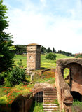 Ruínas em Circulus Maximus. fotos de stock