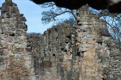 Ruínas históricas da abadia de Basingwerk no Greenfield, perto de Holywell Gales norte Fotografia de Stock