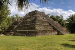 Ruínas maias Imagens de Stock Royalty Free