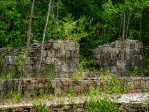 Ruínas maias antigas cobertos de vegetação com as plantas na selva mexicana imagens de stock royalty free