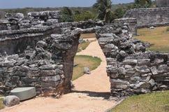 Ruínas maias em Tulum México Fotos de Stock