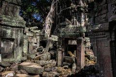 Ruínas no wat do ankor, cambodia Imagem de Stock