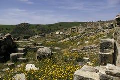 Ruínas romanas Tunísia imagens de stock