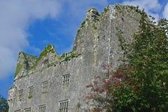 Ruínas velhas do irlandês Fotografia de Stock Royalty Free