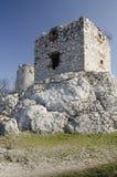 Ruïne van middeleeuws Devicky-kasteel, Tsjechische republiek Stock Foto's