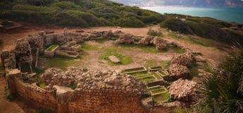 Ruïne van oud mausoleum in Tipasa, Algerije stock foto's