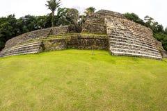 Ruïnes in Belize royalty-vrije stock foto