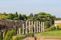 Ruïnes bij het Forum in Rome royalty-vrije stock afbeelding