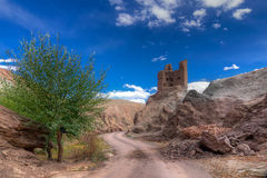 Ruïnes en Basgo-Klooster, Leh, Ladakh, Jammu en Kashmir, India Royalty-vrije Stock Fotografie