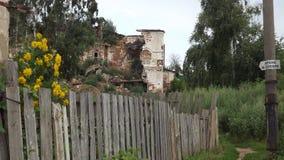 Ruïnes en Bloemen Royalty-vrije Stock Foto