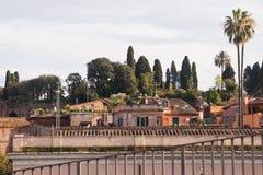 Ruïnes en bomen in Rome, Italië Stock Foto