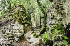 Ruïnes in het bos Stock Fotografie