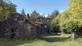 Ruïnes in het hout Stock Foto's