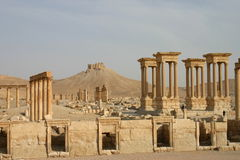 Ruïnes in Palmyra Royalty-vrije Stock Foto