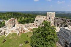 Ruïnes van de 15de eeuw middeleeuws kasteel, Tenczyn-Kasteel, het Poolse Juragebergte, Polen stock foto's