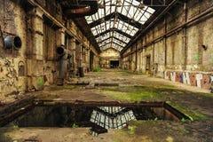 Ruïnes van de fabrieksbouw met vegetatie die terugnemen stock foto's