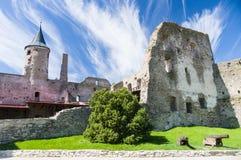 Ruïnes van de het Bisschoppelijke Kasteel en kanonnen van Haapsalu royalty-vrije stock fotografie