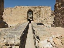 Ruïnes van de oude stad van Carthago in Tunesië royalty-vrije stock foto's