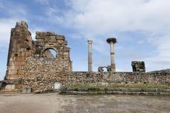 Ruïnes van de roman stad Volubilis in Marocco Stock Foto's