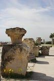 Ruïnes van de Steen van Carthago Stock Fotografie