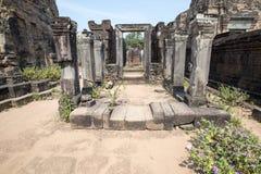 Ruïnes van de tempel in wildernis Stock Foto