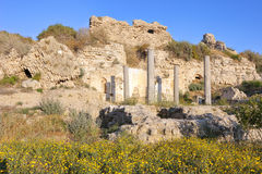 Ruïnes van een oude tempel Royalty-vrije Stock Fotografie