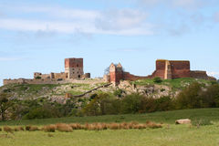 Ruïnes van Hammershus Stock Foto's
