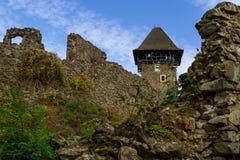 Ruïnes van het Nevitsky-kasteel Stock Foto's