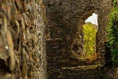 Ruïnes van het Nevitsky-kasteel Stock Fotografie