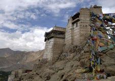 Ruïnes van het Paleis van Leh Royalty-vrije Stock Foto