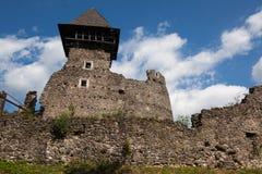 Ruïnes van Kasteel Nevytske in gebied Over de Karpaten Belangrijkst houd toren ( donjon stock fotografie