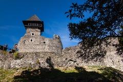 Ruïnes van Kasteel Nevytske in gebied Over de Karpaten Belangrijkst houd toren ( donjon stock afbeeldingen