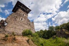 Ruïnes van Kasteel Nevytske in gebied Over de Karpaten Belangrijkst houd torendonjon stock afbeeldingen