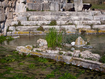 Ruïnes van Limyra, Turkije Royalty-vrije Stock Fotografie