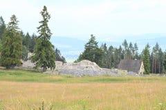 Ruïnes van oud klooster achter weide in Slowaaks Paradijs royalty-vrije stock foto