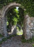 Ruïnes van Oude Bar, Montenegro stock foto's